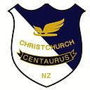 CISC badge.jpg