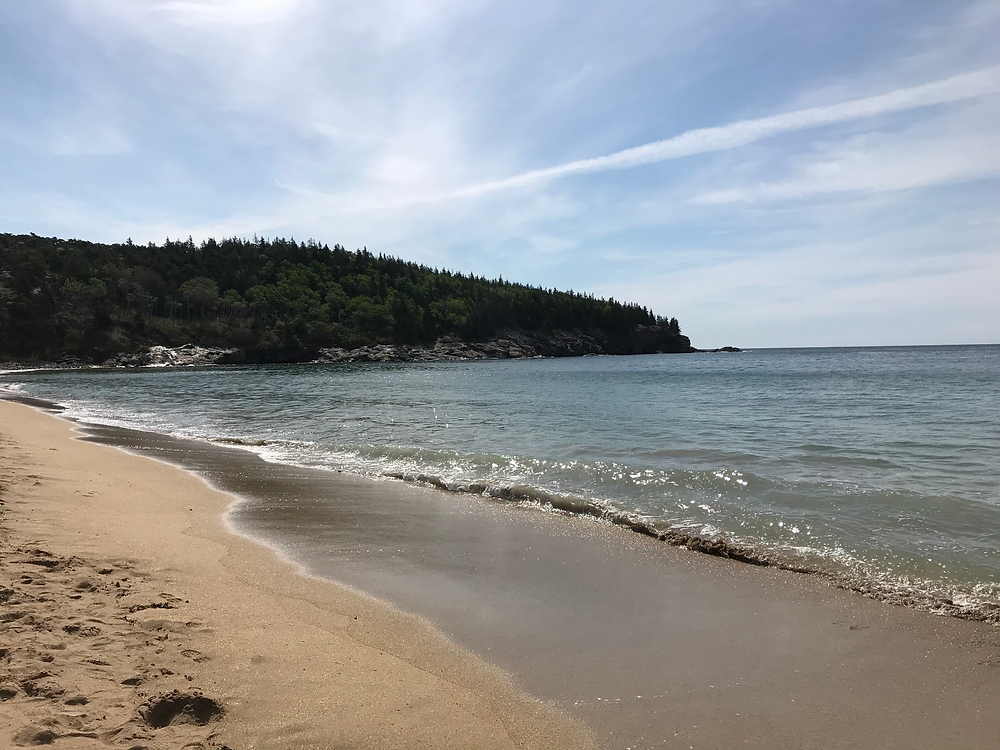 A long, uncharacteristic-for-New-England sandy beach stretches to a dense evergreen forest in the background. Sand Beach at Acadia National Park in Bar Harbor, Maine