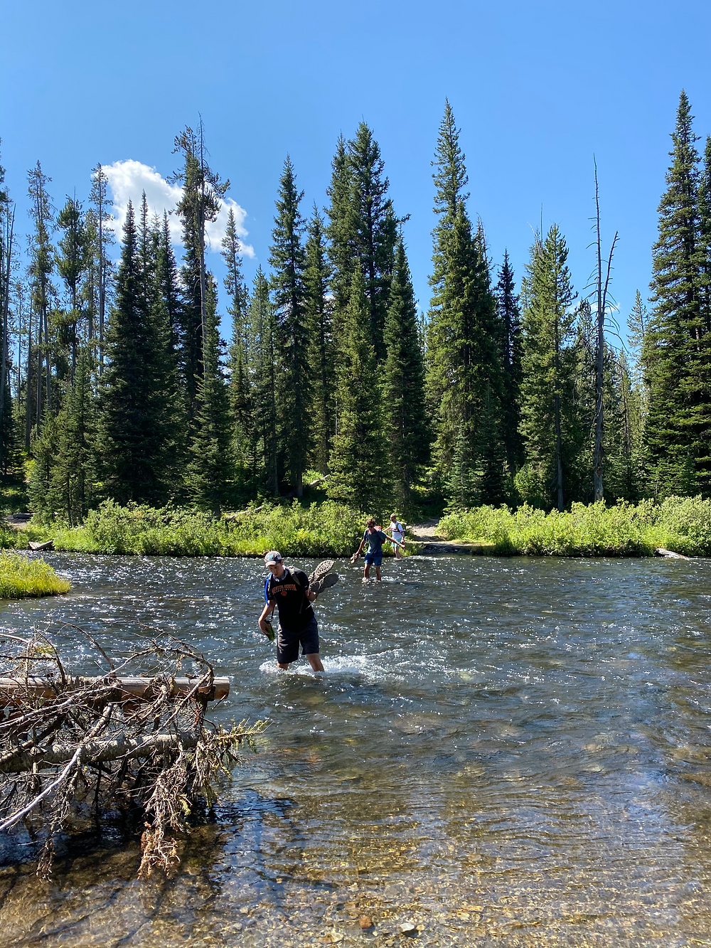 People fording the Falls River on the Union Falls Hike in Yellowstone National Park