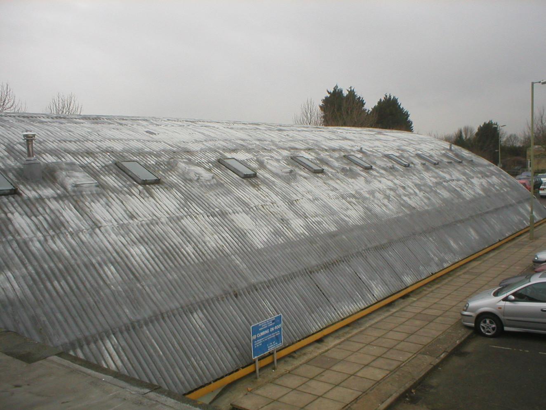 Roof Coating 12