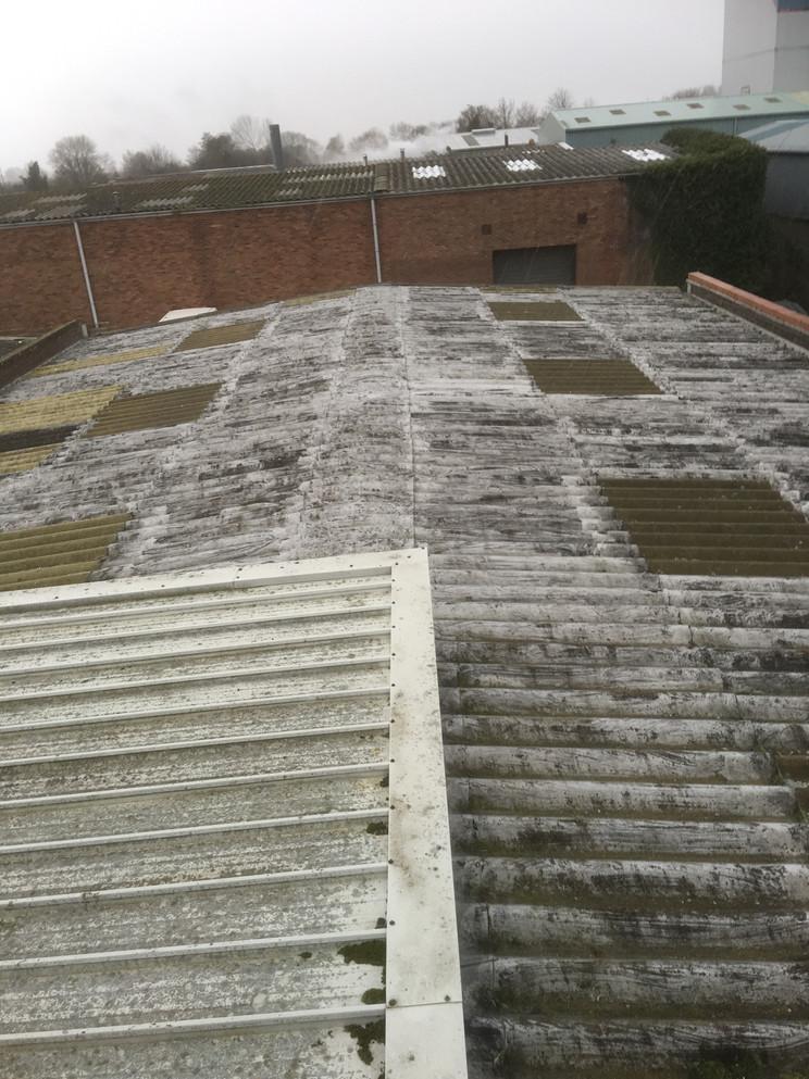 Roof Coating 6