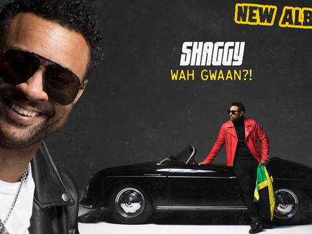 "Shaggy 2019 Album ""Wah Gwan"" Is Going To Be Major"