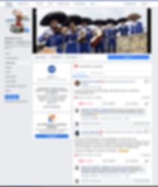 opiniones facebook.PNG