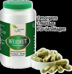 Wermut (Artemsia absinthium).png