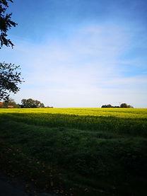 Die Baumberge im Herzen des Münsterlandes