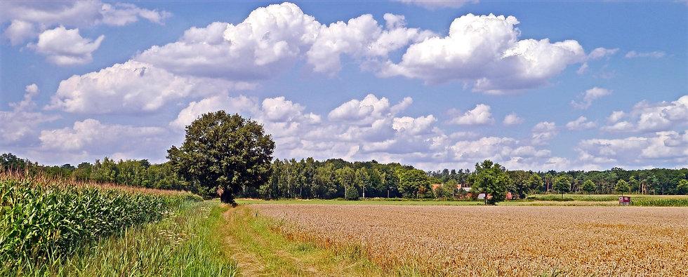 Die Umgebung   Münsterland   Deutschland