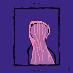 indica 3.png