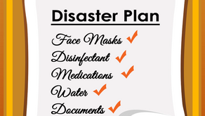 Disaster Planning and COVID-19