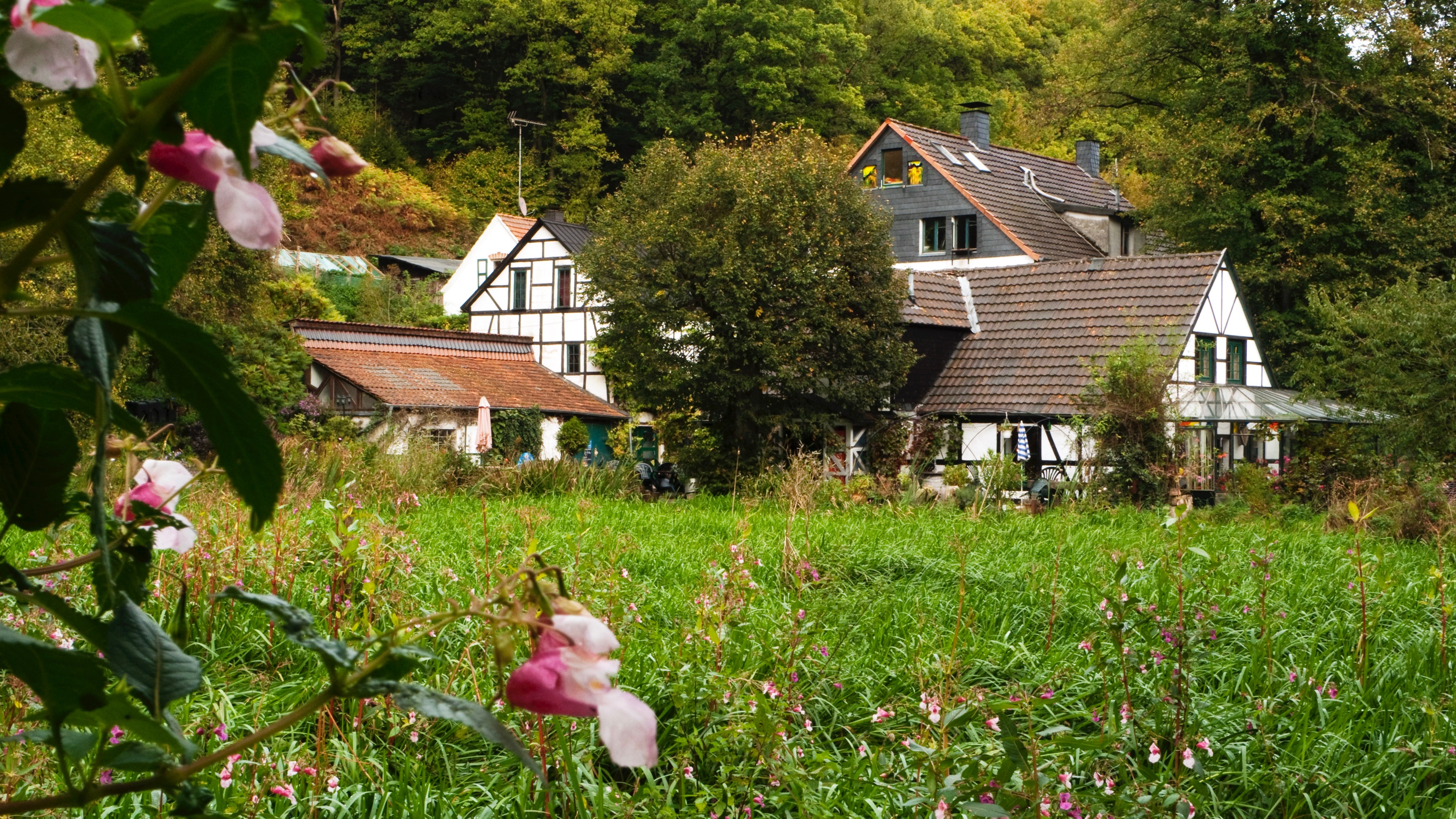 Epscheider Mühle_Natur