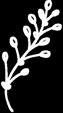 Blumen_website.png