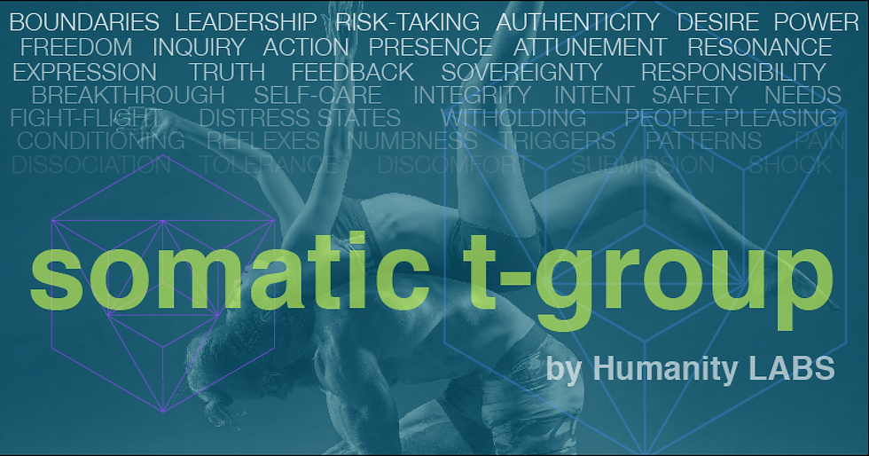 Somatic T-Group Banner
