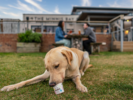 Shepherd Neame unveils 'pawsitively' delicious new dog treat set to get tails wagging