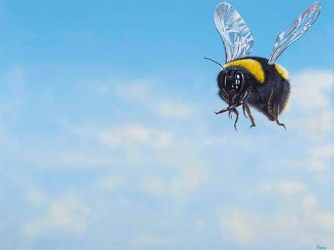 Plight of the Bumblebee:heidi farrar.jpg