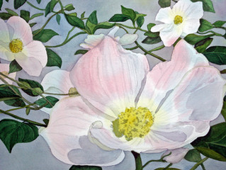 Realistic Glowing Watercolor of Dogwood