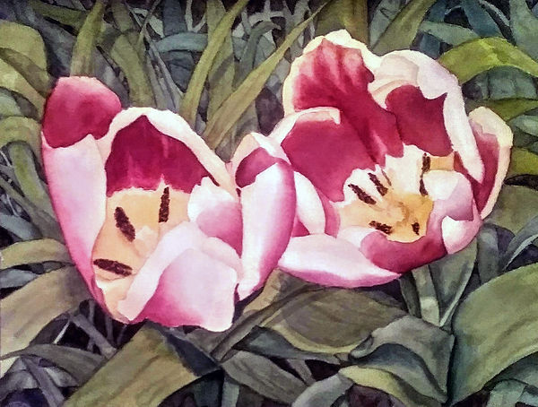 my art spring tulips.jpg