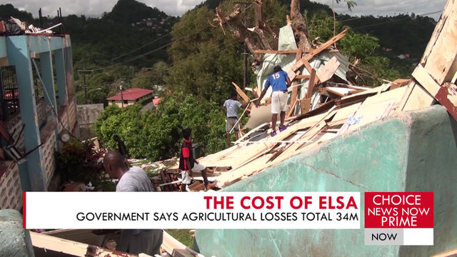HOW MUCH WILL ELSA COST THE GOVERNMENT?