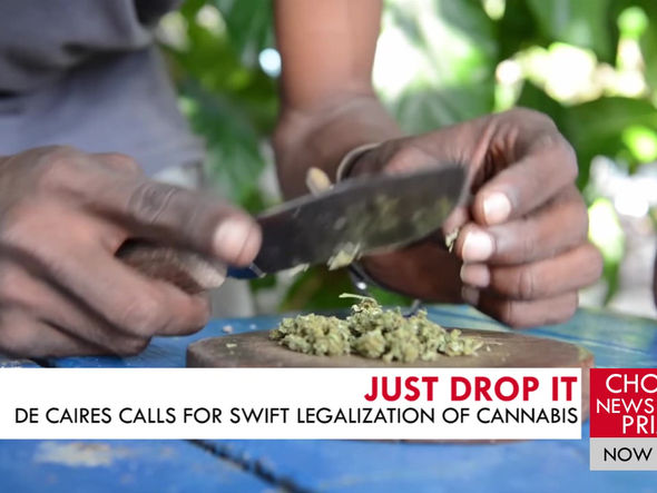 NGP'S LEADER URGES THE NEWLY ELECTED GOVERNMENT TO LEGALIZE CANNABIS.