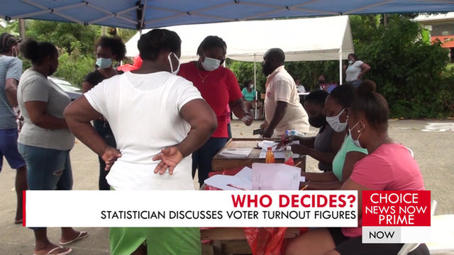 FORMER DIRECTOR OF STATISTICS COMMENTS ON VOTER TURNOUT.