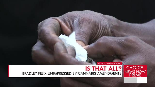 BRADLEY FELIX COMMENTS ON THE GOVERNMENTS EFFORTS REGARDING CANNABIS DECRIMINALIZATION.