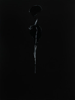 Black Series; Spinal Whisper - sold