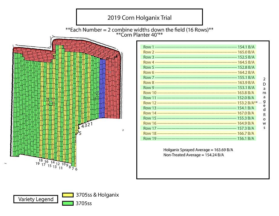 Holganix Trial Template.png