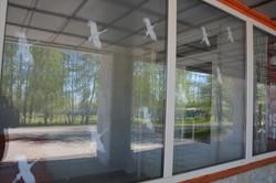 Окна_Победы