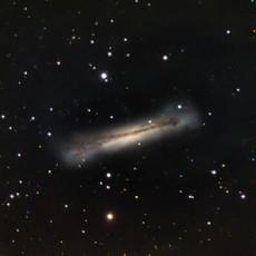 NGC3628 im Leo Triplet