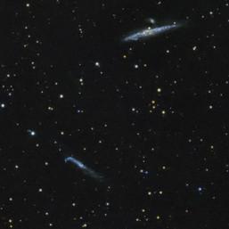 NGC4631/ NGC4657