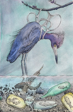 Bird Gone, Fish In- Ink & Watercolor by