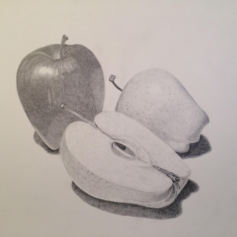 Drawing Basics final project