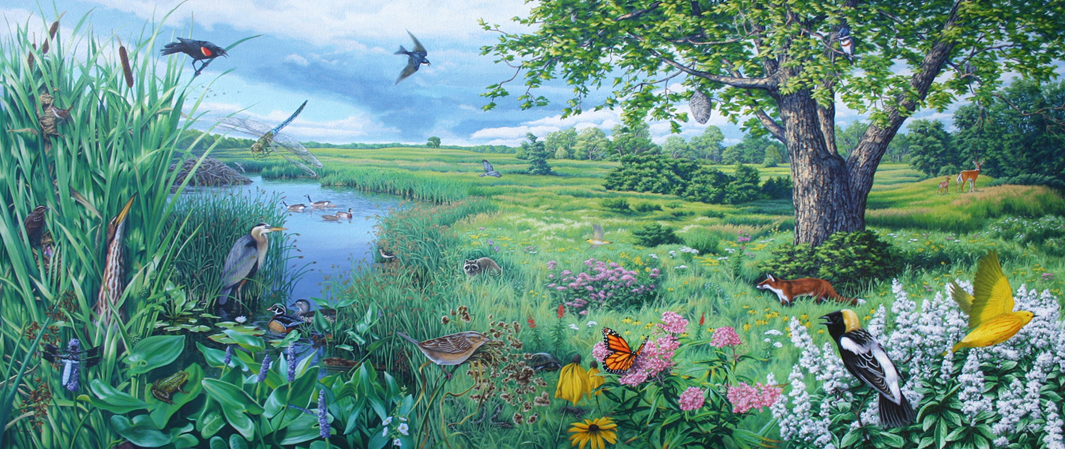 SEND_Linda Thomas-Seneca Meadows Wetlands mural