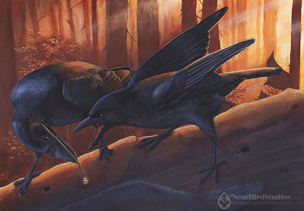 Crows-small-watermarked