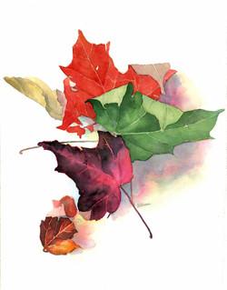Leaves,Final1.jpg