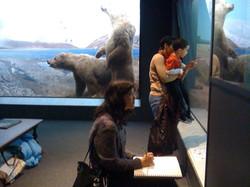 Drawing at the Peabody Museum
