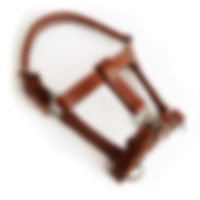 0231203-cabezada-cuadra-miniatura.jpg