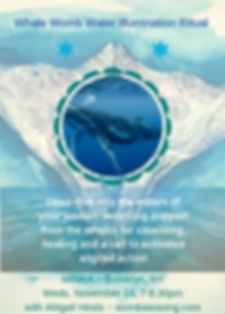 Whale Womb Water Illumination Ritual-2.j