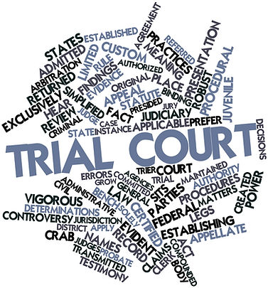 trial lawyer local counsel d.c. court district of columbia court federal court state court trial hearing