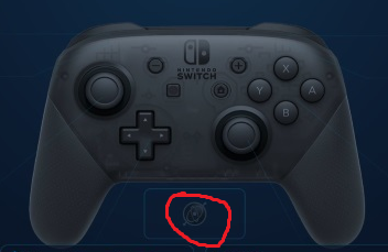 An example of the gyroscope symbol on the Pro Controller menu.