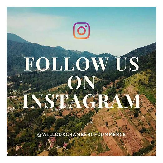 Instagram post.png