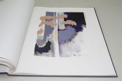 Livro Cinza