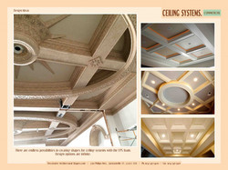 COMMERCIAL ceiling systems 2
