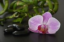 massage sur mesure, massage personnalisé, massage val d'oise, massage 95, massage 78, massage yvelines