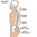massage découverte dos, trapèze, nuque, tête, impression massage, massage val d'oise, massage 95, massage 78