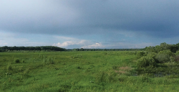 7 Prairies.jpg