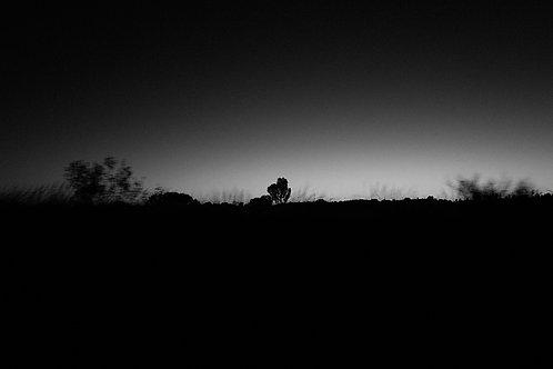 Daybreak #2