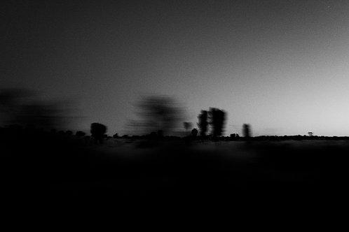 Daybreak #1