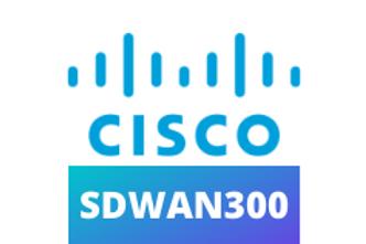CISCO SDWAN300