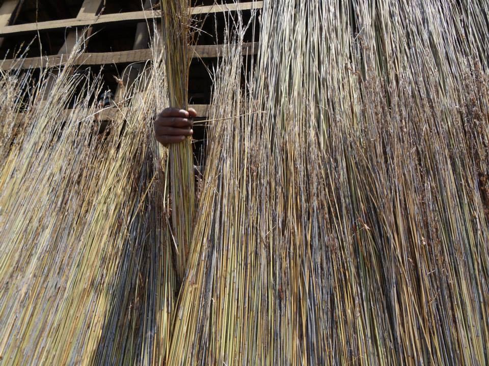 Tækkemand og nyt stråtag i Sydafrika