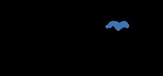 MES_Logo-schwarz.png