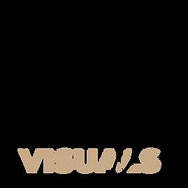WBG VISUALS LOGO.png